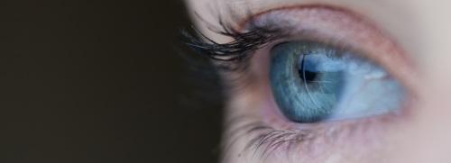 eye-691269